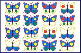 Описание: Найди пару каждой бабочке